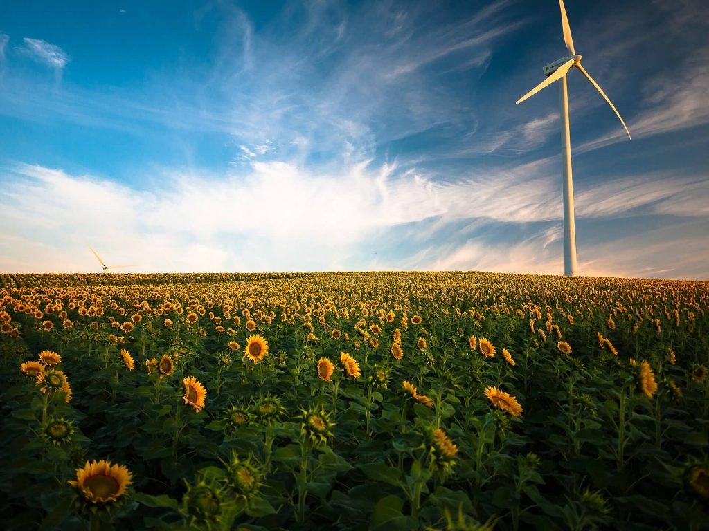 Mit dem Lyxor New Energy ETF (LYX0CB) kann in Unternehmen aus dem Sektor alternative Energien investiert werden